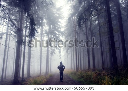 Man in foggy autumn forest