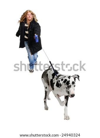 Man walking his dog (Great Dane 4 years) in front of a white background