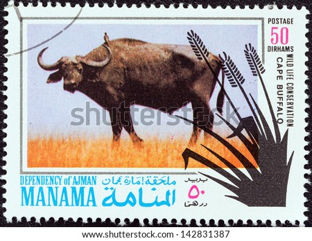"MANAMA DEPENDENCY - CIRCA 1971: A stamp printed in United Arab Emirates from the ""Wildlife conservation"" issue shows a Cape buffalo (Syncerus caffer), circa 1971."