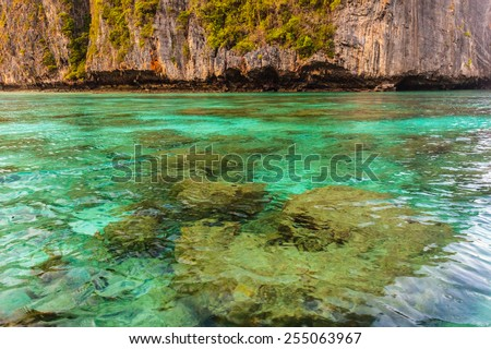 Maya Bay is  sheltered by  high cliffs on three sides with several beaches with soft white sand and exotic fish in clear water