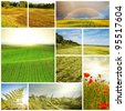 meadows and fields collage - stock photo