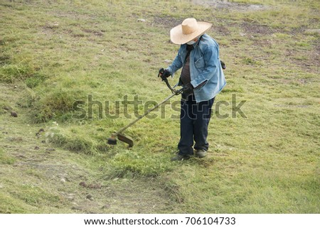 mexican gardener at work using grass trimmer