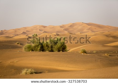 Middle East desert - colourful patterns of the Liwa Desert, which is part of the Rub al Khali Desert or Empty Quarter desert, straddling UAE, Oman, Yemen and Saudi Arabia.