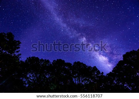 Milky Way at night in the forest