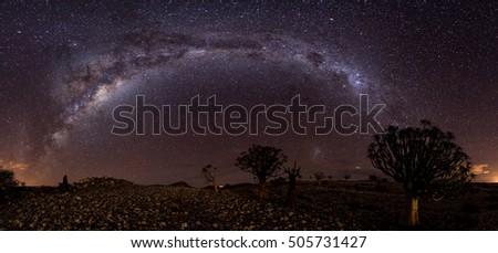 milkyway panorama and qiver tree's