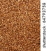 millet wheat - stock photo