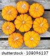 Miniature decorative pumpkins - stock photo