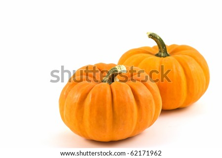 Miniature pumpkins on white background with copy space