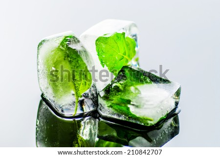 Mint leaf frozen in ice cube on reflect background