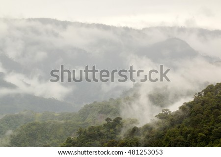 Mist rising from primary montane rainforest in the Rio Quijos Valley, Ecuador. Rainfall in the Amazon basin is recycled into the atmosphere by transpiration from the trees.