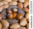 Mixed nuts in the shell selection of Brazil,almonds,walnut and hazelnuts - stock photo