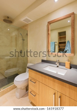 Modern bathroom in luxury home