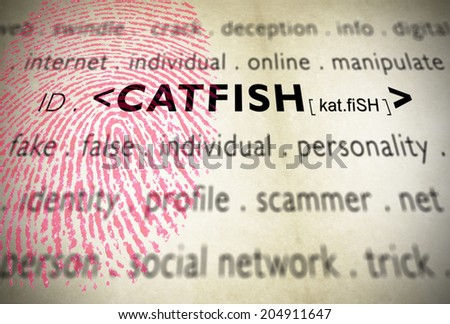 What is catfish slang