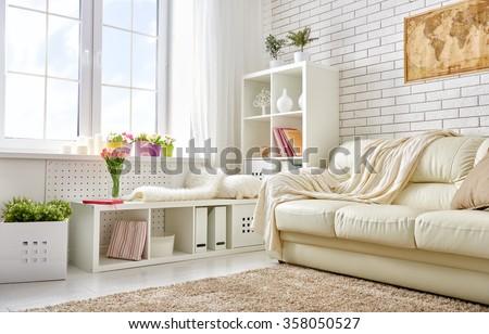 bright colors for living room. modern living room in bright colors Modern Living Room Bright Colors Stock Photo 358050527  Shutterstock