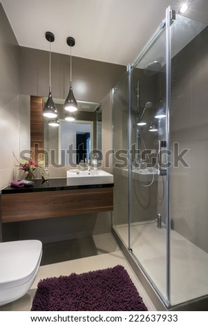 Modern luxury bathroom with shower in european style