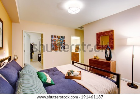 Modern master bedroom with walk-in closet and bathroom. View of elegant bed with purple bedding