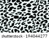 Modern stylish texture. The tiger cotton chintz. - stock photo
