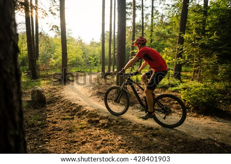 Mountain biker riding on bike in spring inspirational mountains landscape. Man cycling MTB on enduro trail path. Sport fitness motivation and inspiration. Rider mountain biking in fall woods.
