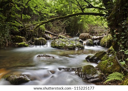 Mountain landscape with river, cambarco ,cantabria, spain