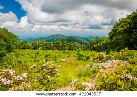 North georgia mountains brasstown bald sunset stockfoto 53963872 shutterstock - Levend berg outs ...