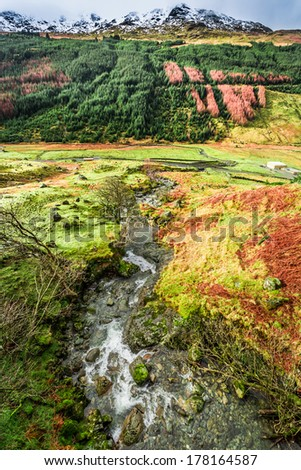 Mountain river flowing in the valley, Scotland
