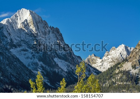 Mountain valley filled with trees and snowy peak