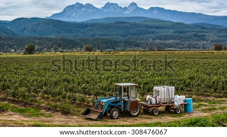 Mountains behind a tractor and blueberry field.