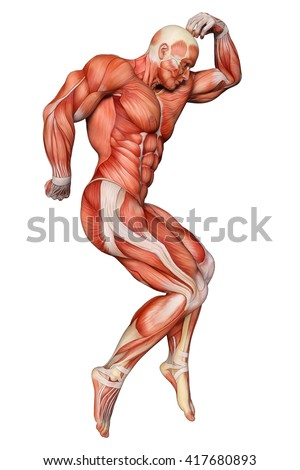 muscle man healthcare and medical 3d illustration