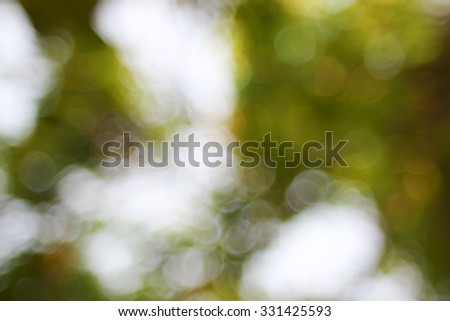 Natural green blurred background.