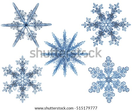 Natural snowflakes collection on white background