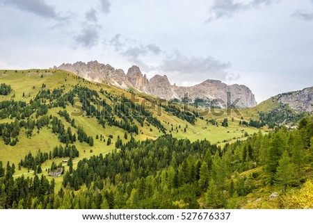 Nature near Gardena Pass in Italy Dolomites