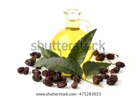 Neem, Neem Tree, Nim, Margosa, Quinine, Holy tree, Indian Margosa Tree, Pride of china, Siamese Neem Tree (Azadirachta indica A.Juss.) Leaves, seeds and neem oil.
