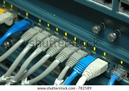 Network cables connecting to a switch.