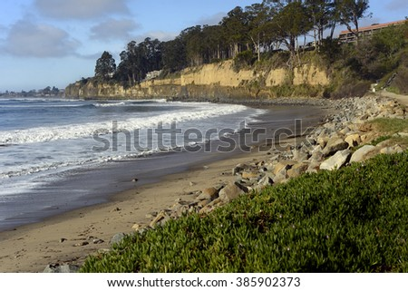 New Brighton State Beach and Campground, Capitola, California