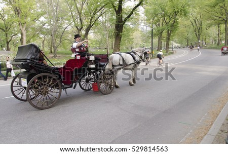 New York City, USA - May 5, 2015: visit to central park by carriage, romantic ride