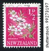 NEW ZEALAND - CIRCA 1960: stamp printed by New Zealand, shows Manuka Flower, circa 1960 - stock photo