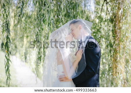 newlyweds kiss under a veil on background willow