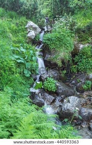 Shutter Island Stream Geran