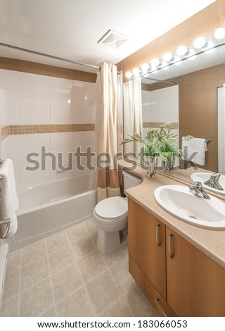 Nicely decorated modern washroom with the toilet, vase with the flowers in  the vase.