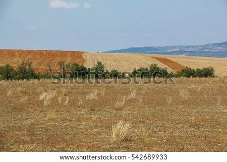 Northern Greece. Harvested field.