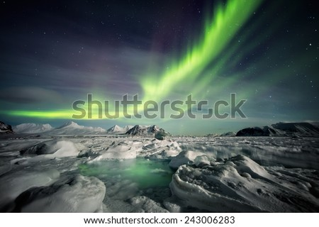 Northern Lights above the frozen Arctic fjord