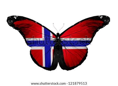 Norwegian flag butterfly, isolated on white background
