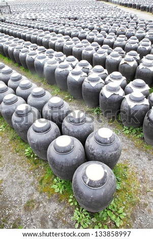 Numberless vinegar pottery jars on the field for fermentation.