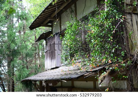 Old abandoned timber house in forest, Japan