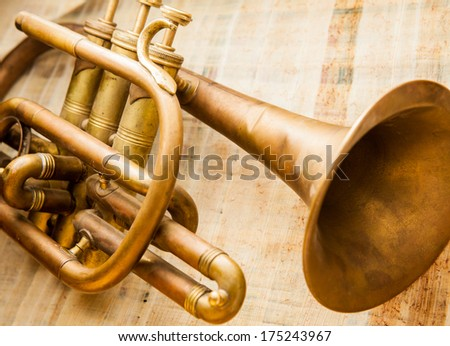 Old damaged brass trumpet photographed on papyrus.