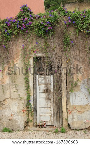 Old door (Portugal)