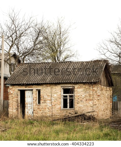 Wild street cat stock photo 458492587 shutterstock - The beauty of an abandoned house the art behind the crisis ...