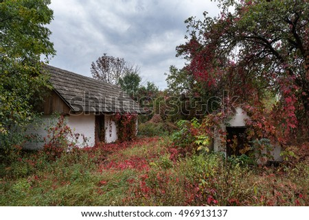 Old house completely covered with plant