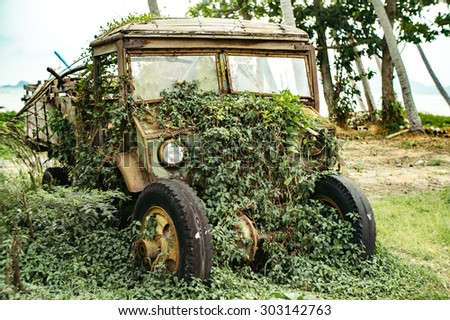 Old truck in the jungle