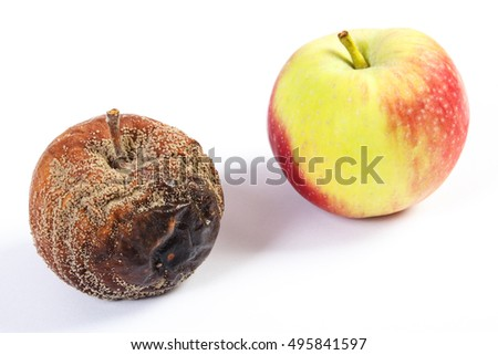 Old wrinkled moldy and fresh apple on white background, healthy and unhealthy food
